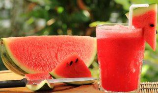 diet detox semangka