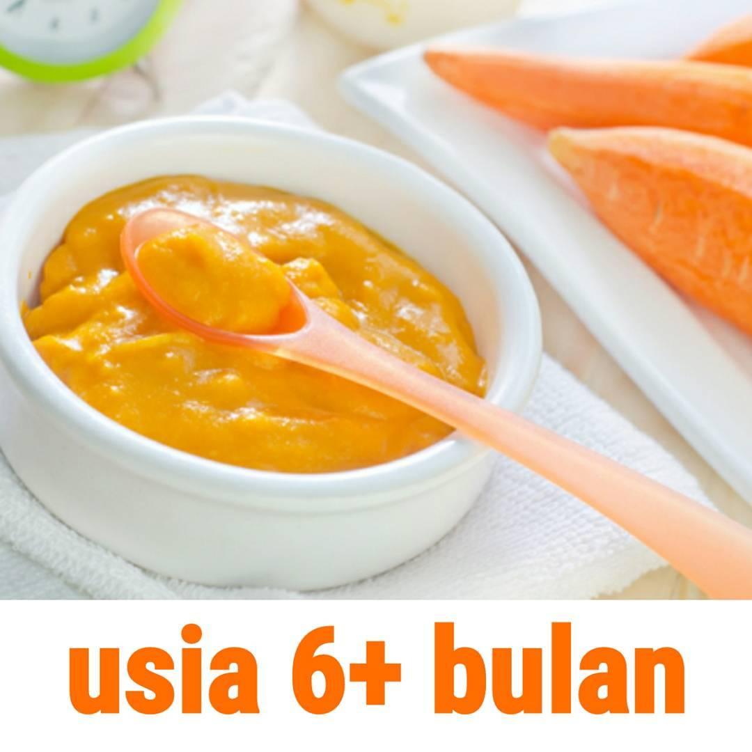 Resep Bubur Bayi Wortel Jagung Manis Susu